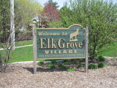 elk grove village office movers